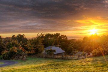 devenir rentier en investissant dans les groupements fonciers agricoles : les astuces